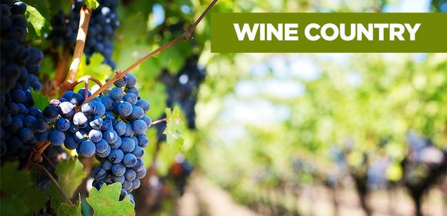 California Wine & Redwoods Owner Adventures image