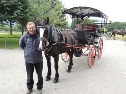 Horse-drawn jaunting car