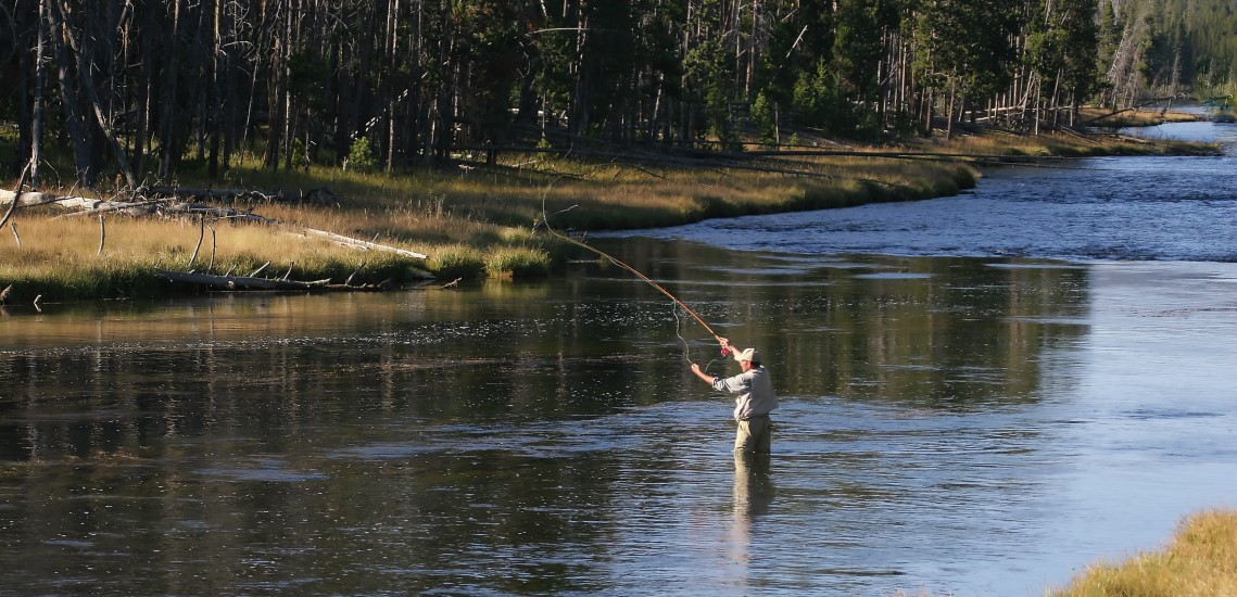 Trout fishing in Wyoming river